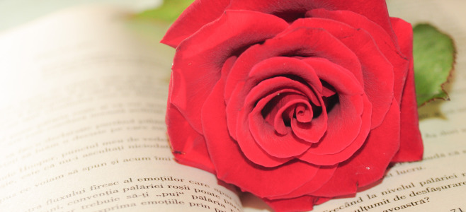 San Valentino 2015 su internet